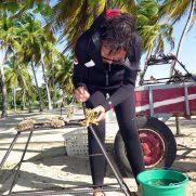 manta-diving-nosy-be-coral-garden-galley-04