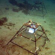 manta-diving-nosy-be-coral-garden-galley-10