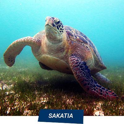Manta Diving Nosy Be - Escursioni Mare - Sakatia