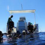 Manta Dive Club - Imbarcazioni - Kali