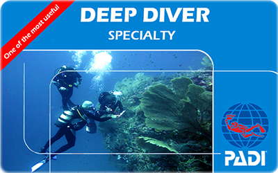 Manta Diving Nosy Be - Corsi - Deep Diver