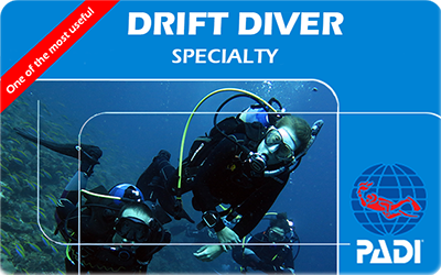 Manta Diving Nosy Be - Corsi - Drift Diver