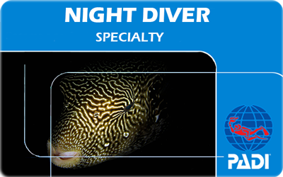Manta Diving Nosy Be - Corsi - Night Diver