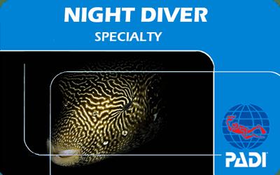 Manta Diving Nosy Be - Corsi - Night Diver
