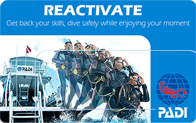 Manta Diving Nosy Be - Corsi - Reactivate