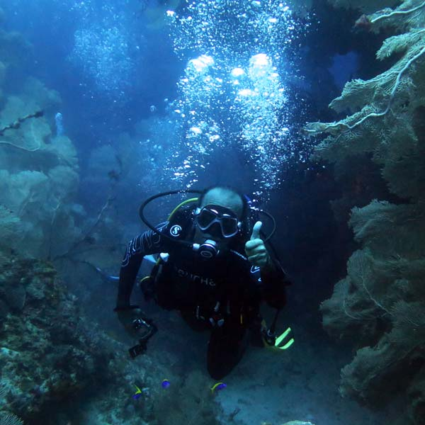 Manta Diving Nosy Be - Immersioni a largo