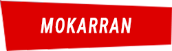 Manta Diving Nosy Be - Immersioni a largo - Mokarran