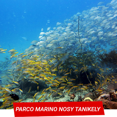 Manta Diving Nosy Be - Immersioni - Parco marino Nosy Tanikely