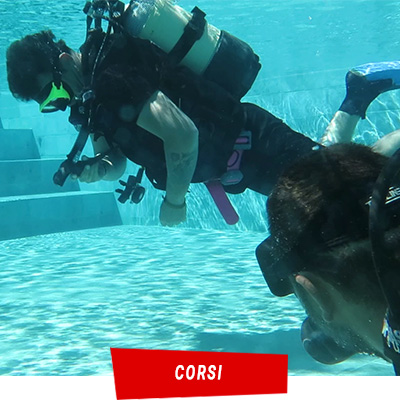 Manta Diving Nosy Be - Corsi