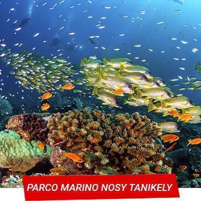Manta Diving - Nosy Be - Parco marino Nosy Tanikely